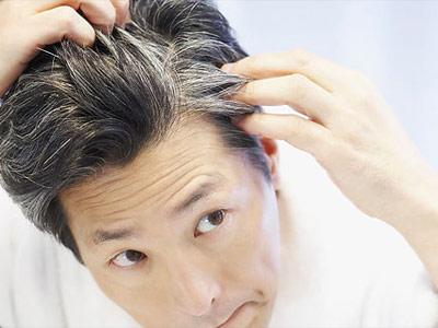 MartizMayer Laboratories Anti-Gray Hair 0