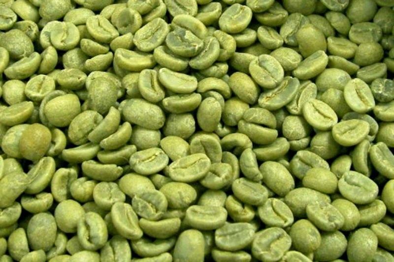 Hạt cà phê xanh giúp đốt cháy chất béo nhanh chóng