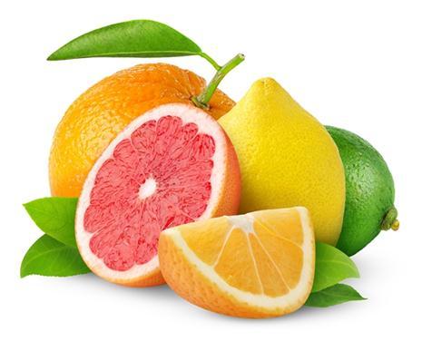 Tác dụng nổi bật của thành phần schiff vitamin c