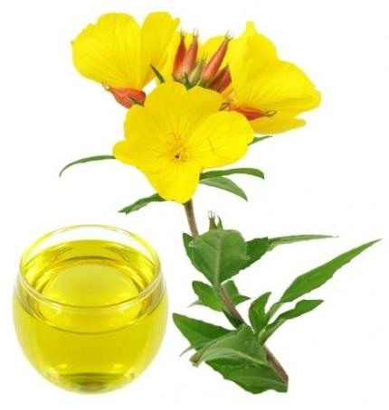 Tinh dầu hoa anh thảo chứa nhiều omega 6