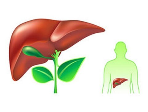 Now liver detoxifier & regenerator – thuốc giải độc gan và tăng cường chức năng gan, 90 viên