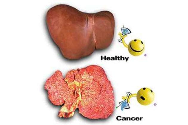 Tác dụng nổi bật của now liver detoxifier regenerator