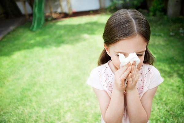 Trẻ em dễ mắc dị ứng đường hô hấp do sức đề kháng yếu