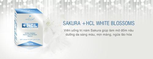 Tác dụng nổi bật của sakura hcl white blossom