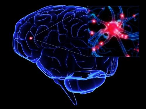 Bộ 3 sản phẩm trunature ginkgo biloba giúp tăng cường sự tập trung, trí nhớ tốt