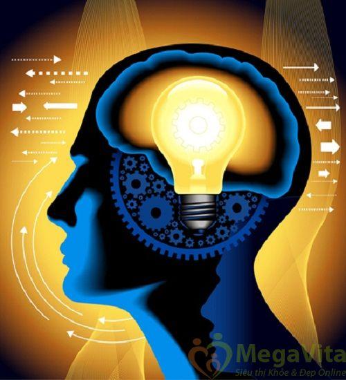 Trí nhớ là gì nguyên nhân của bệnh suy giảm trí nhớ