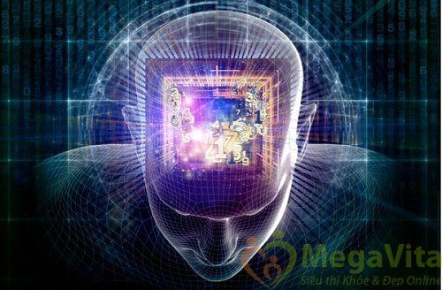 Trí nhớ là gì ? nguyên nhân của bệnh suy giảm trí nhớ