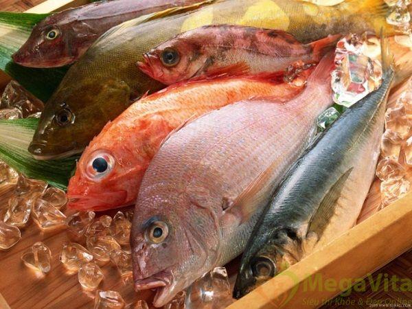 Những thực phẩm nào có chứa nhiều collagen nhất