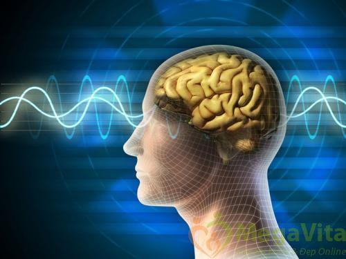 Nên ăn gì để tăng cưỡng trí nhớ