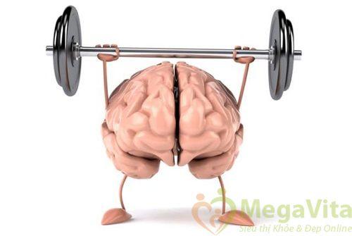Những thực phẩm giúp tăng cường trí nhớ và tập trung