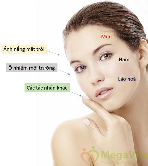 Tác dụng tăng gấp đôi hiệu quả dưỡng trắng dưỡng ẩm cho làn da