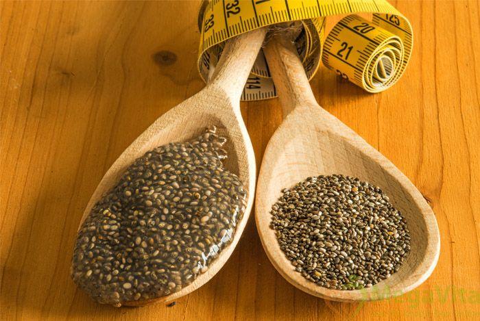 Tìm đại lý phân phối hạt chia nhập khẩu từ Úc và mỹ