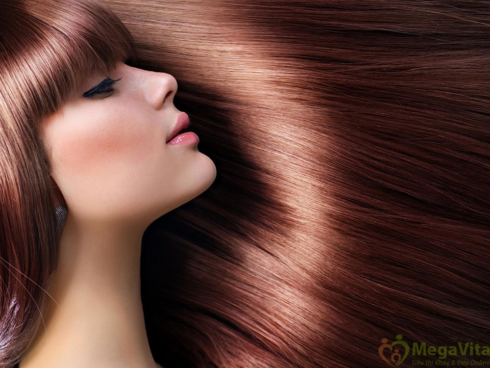 Bộ dầu gội queen perfume nhân sâm hàn quốc và dầu hoa trà ngăn rụng tóc 355ml